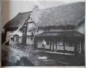 Picture of grandad and dad thatching